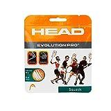 Head Evolution Pro Squash String 16L (White)
