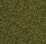 Noch - 08212 - Herbe, Prè, 1, 5 Mm