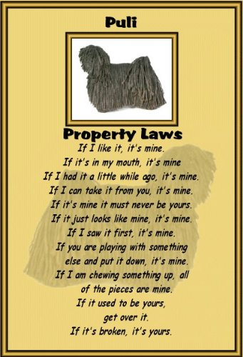 Puli-laminato-Cartello proprietà leggi