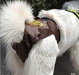 Glield Hunde Läufigkeitshose Hygienehose Unterhose Unterwäsche PTK01 (M (waist 48cm-62cm), coffee) - 2