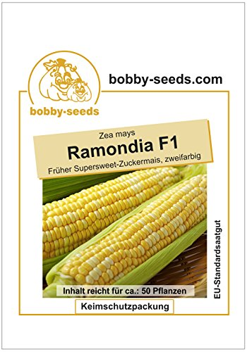Bobby-Seeds Maissamen Ramondia F1 Zuckermais Portion
