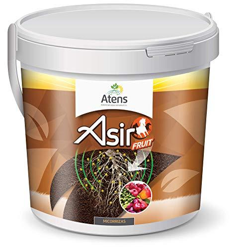 Atens Asir Fruit - Micorrizas y Trichodermas - 50 Pastillas