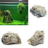 Hinmay Bimsstein Aquarium Dekoration Rock Natural Bimsstein View, 9-15cm, Large
