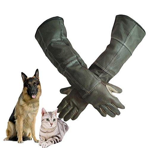 DAN Animal Handling Handschuhe für Katze Hund Vogel Schlange Papagei Eidechse, Anti-Biss / Kratzer Gardening Wildtiere Schutzhandschuhe