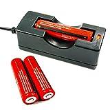Angopower 2 pzzi 18650 batteria Ricaricabile protetta 3.7 Volt 3000 mAh e caricabatterie AC 100-240V per Batteria 18650 EU( per lampade torcia) ;Non per Sigarette Elettroniche