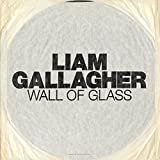 Wall Of Glass [Vinilo]