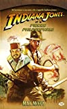 Indiana Jones, tome 9 - Indiana Jones et la pierre philosophale