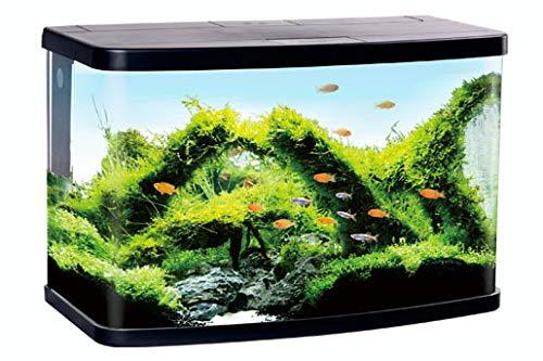 Resun Aquarium 60Liter mit LED Abdeckung und Eck-Filter
