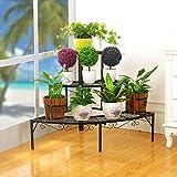 Huajia Schmiedeeisen Multi-Layer-Blumen Regal Ecke Leiter Topf Rack Balkon Grüne Blume Stehen Ein Paar Wohnzimmer Balkon Blumen Regal (Farbe : Schwarz)