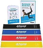 ATEMI SPORTS Fitnessbänder | Set aus 4 Widerstandsbändern mit Trainingsanleitung | Ideal für Muskelaufbau, Physiotherapie, Pilates, Yoga, Gymnastik und Crossfit | Gymnastikband für Männer und Frauen