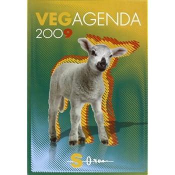 Vegagenda 2009