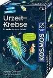 Kosmos 657871 Urzeit-Krebse Experimentierset für Kinder