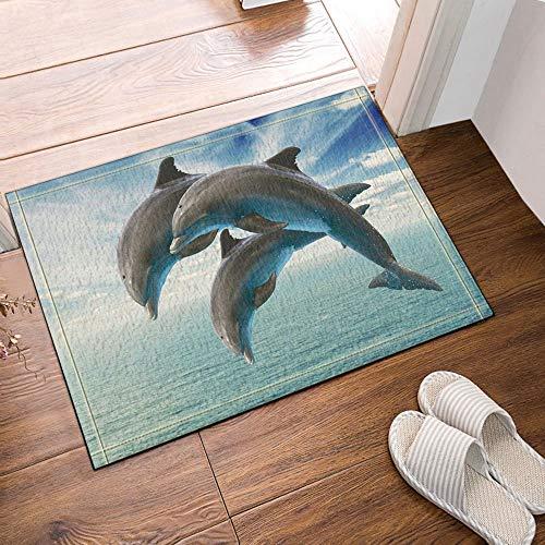 GzHQ Fischliebhaber Delfine springen vom Meer unter dem Himmel Bad Teppiche rutschfeste Fußmatte Boden Eingänge Outdoor Indoor Haustür Matte Kinder Badematte 15.7x23.6in Badezimmerzubehör -