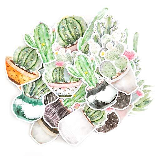 Navy Peony verblasste Aquarell Mond- und Kaktus-Aufkleber für Wasserflaschen Laptop Tagebuch und Sammelalbum | wasserdicht | Tolles Aufkleber Set für Kinder und Erwachsene | 22 Stück