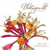 Blütenpracht 2016 - Blumen - Bildkalender (33 x 33) - mit Zitaten - mit Foliendeckblatt