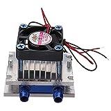 ILS - Thermoelectric Peltier Refrigeration Kit sistema raffreddamento Ventola raffreddamento fai-da-te