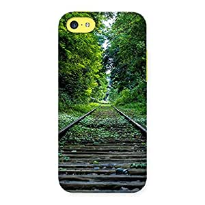 Cool Beautiful Track Back Case Cover for iPhone 5C