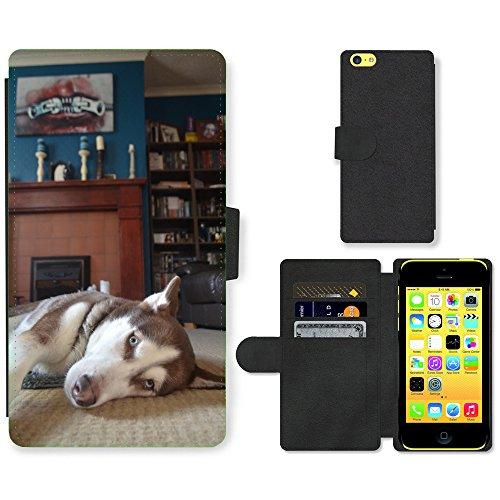 Folio Schutzhülle // F00024205 Husky Hund zu Hause entspannen // Apple iPhone 5C (Iphone 5c Wallet Case Husky)