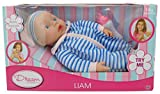 Dream Kreationen Doll Liam - Macht Realistische Baby Sounds - 30cm