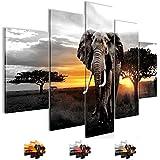 Bilder 150 x 100 cm - Afrika Bild - Vlies Leinwand - Kunstdrucke -Wandbild - XXL Format - mehrere Farben und Größen im Shop - Fertig zum Aufhängen - !!! 100% MADE IN GERMANY !!! - 001253c