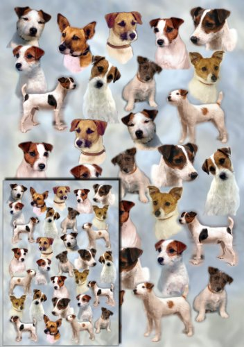 parson-russell-jack-russell-terrier-dog-gift-wrapping-paper-with-small-gift-card-design-by-starprint