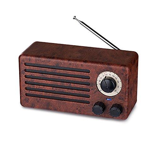 Enceintes Bluetooth rétro, Deux Haut-parleurs Classiques sans Fil 10W avec 10 Heures de Lecture, Radio FM, Micro intégré, Appel Mains Libres,clé USB, Carte Micro SD, Son stéréo HD et Basses