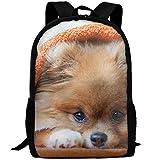 best& Cute Pomeranian School Rucksack College Bookbag Unisex Travel Backpack Laptop Bag