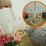 Bird Graines de nourriture Parrots Intelligence jouet pour perroquet perruche perruche Amazones Calopsittes Gris du Gabon cacatoès Ara Amazon inséparables...