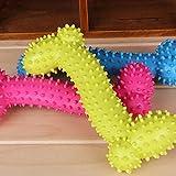 Adorable de décompression pour chien forme os en caoutchouc jouets à mâcher dentaire tranining Funny couleur aléatoire non toxique