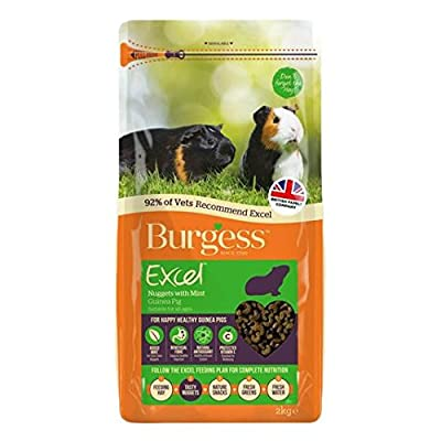 Burgess Excel Guinea Pig Food Nuggets with Mint 2Kg by Burgess Excel