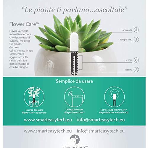 Original Xiaomi Mi Plant Flower Care Europäische Version Echtzeit Sensor für Innen und Außenbereich , Wasserdicht ,Bodenfruchtbarkeit, -Feuchtigkeitsgrad, Licht und Temperatur. -
