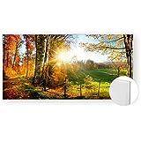Acrylglasbild Acryl Glasbilder 120x60 cm 5mm edel Herbst Wald Weg Farbe color, Material Ohne Gravur-Rahmen