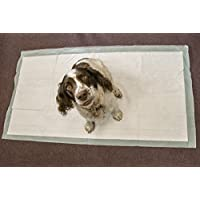 20 Extra Large 150x80cm Puppy Dog Pet Toilet Training Wee Pads Unscented Super Sized Absorbent Mat Cover