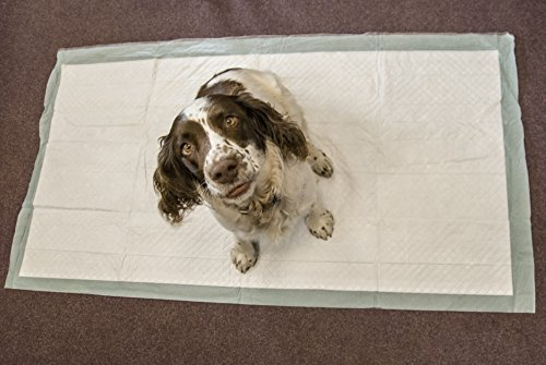 Speedwellstar 20 Extra Large 150x80cm Puppy Dog Pet Toilet Training Wee Pads Unscented Super Sized Absorbent Mat Cover C&C 2×4 Fleece Liner