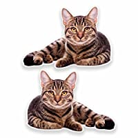 2 x Cat Vinyl Sticker Decal Laptop Car Travel Luggage Label Tag #9639