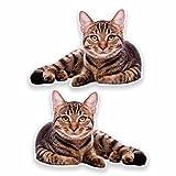 2x Sticker en vinyle chat en voiture pour ordinateur portable de Voyage bagages...