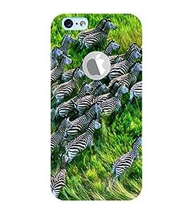 Fuson Designer Back Case Cover for Apple iPhone 6 (Logo View Window Case) (Zeal Of Zebras Zebra Group Striped Zebras Forest)