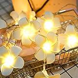 FeiliandaJJ Weiße Blume LED Lichterkette 3M 20LED LED-Licht für Weihnachten Party Innen Haus Deko String Lights (Weiß)