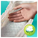 Pampers Baby-Dry 144 Nappies with 3 Absorbing Channels, 11 - 23 kg, Size 5 Bild 3