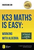 KS3 Maths is Easy: Working with Algebra: In-Depth Revision Advice For The New Ks3 Curriculum. (Revision Series)