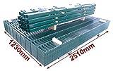 Doppelstab-Mattenzaun Komplett-Set / Grün / 123cm hoch / 40m lang / Metallzaun Zaun Zaunanlage Gartenzaun