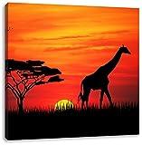 Giraffe im Sonnenuntergang, Format: 60x60 auf Leinwand, XXL riesige Bilder fertig gerahmt mit Keilrahmen, Kunstdruck auf Wandbild mit Rahmen, günstiger als Gemälde oder Ölbild, kein Poster oder Plakat