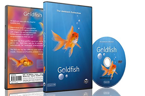 baby-and-kids-dvd-goldfish-aquarium-shot-in-hd-with-long-scenes