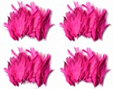 #9: Rooh dream catcher - pack of 4 pink colour feathers (40 x 4)
