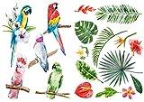 Décoration adhésive 157171 Nature Tropicale, Polyvinyle, Multicolore, 21 x 0,1 x 29,6 cm