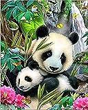 DIY 5d Diamant Peinture, Ezakka complète carré perceuse Tableaux images Arts Craft pour Home Décoration murale, les activités de famille et Émotionnelles de réglage 8x10inches Panda Family