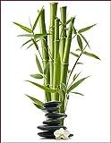 Schön und Wieder Fensterfolie Opolux - Selbstklebend - Bedruckt - Sichtschutz (Bambus mit Steinen, 30 x 40 cm)