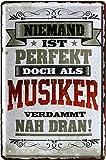 Niemand ist perfekt, doch als Musiker 20x30 cm Blechschild 2201