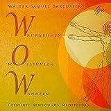 WOW - Wahrnehmen, Wohlfühlen, Wandeln: Geführte Bewegungs-Meditation
