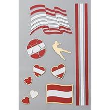 Flaggen Tattoos Österreich   Flash Tattoo für die Haut   Länder Fanartikel   Fußball Flaggen Fahnen Tattoo von Österreich   1 A5 Sheet 11 Motive   verschiedene Länder verfügbar